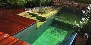 Como construir una piscina natural paso a paso y muy for Como hacer una piscina paso a paso