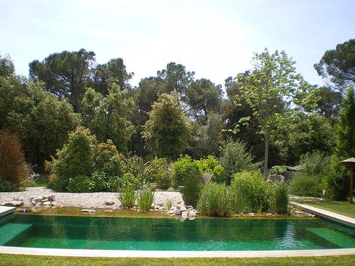 Como hacer una piscina natural incre blemente f cil for Como construir una piscina natural ecologica