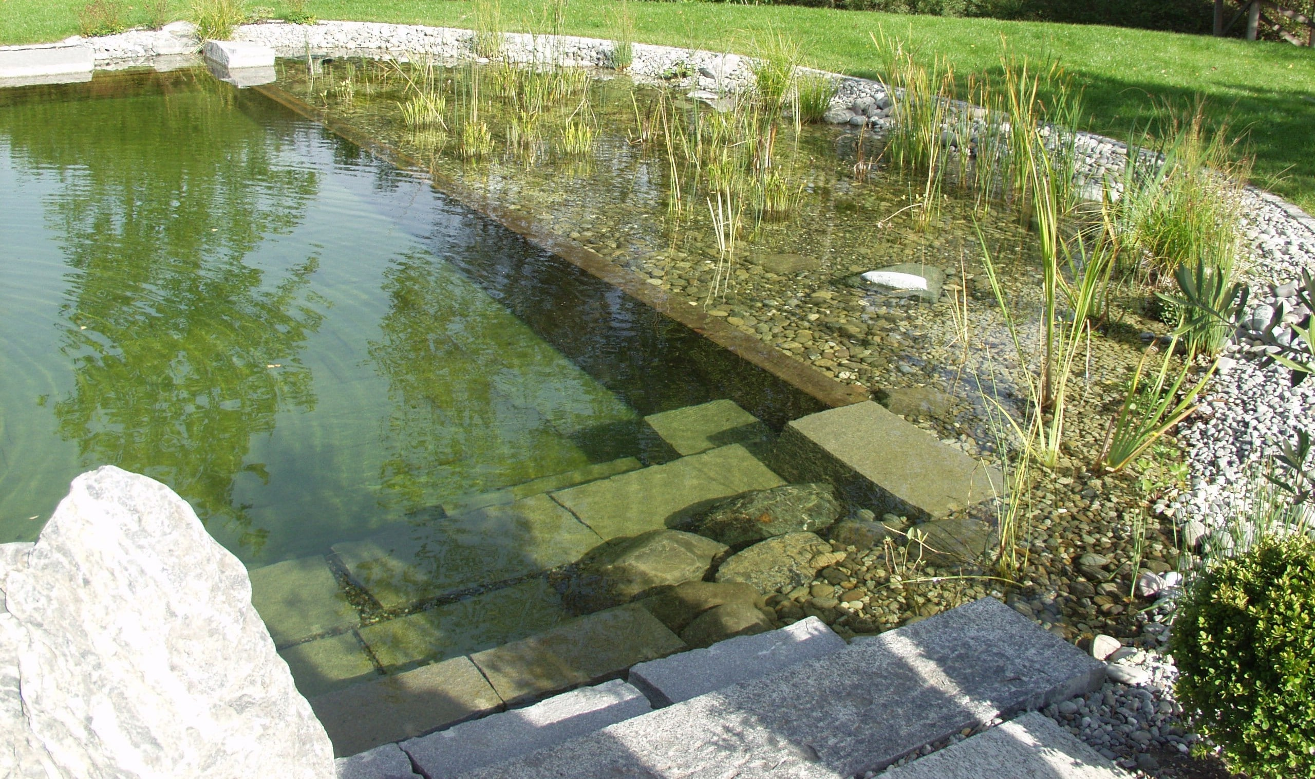 Como hacer una piscina natural en casa for Construccion piscinas naturales