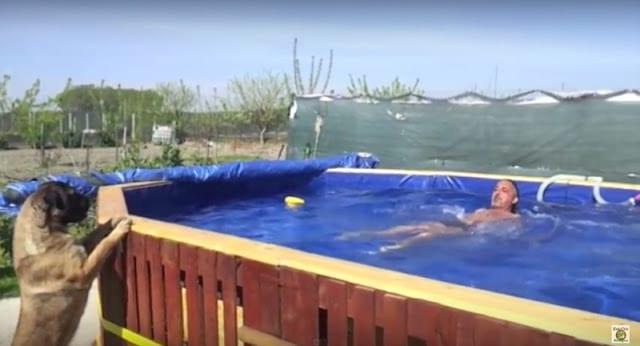 Como hacer una piscina con pl stico facilmente en casa for Costo de hacer una piscina