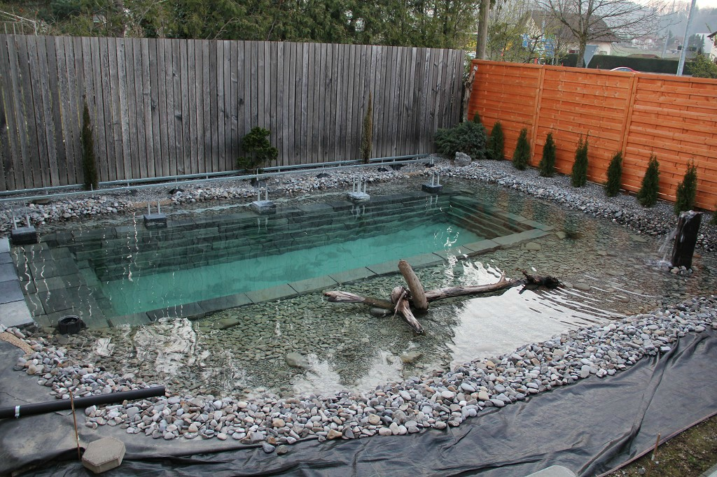 Como hacer piscina natural en el patio de tu casa for Como construir una piscina natural ecologica